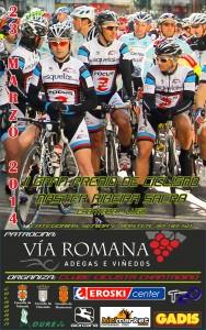 Cartel del II Gran Premio Máster Ribeira  Sacra