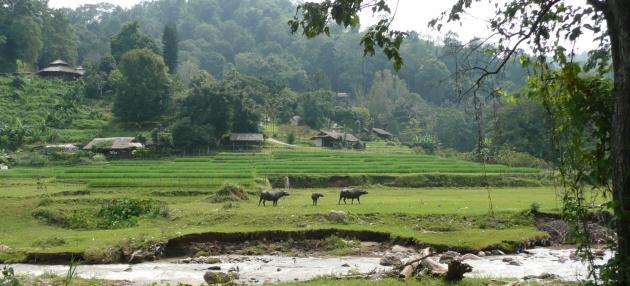 Paisaje del circuito de Samoeng
