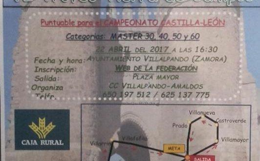 Villalpando 2017